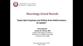 Thumbnail for entry Septo-Optic Dysplasia and Midline Brain Malformations: An Update