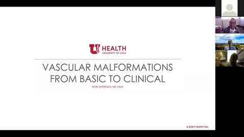 Thumbnail for entry Vascular malformations from basic to clinical