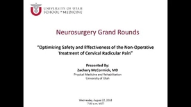Thumbnail for entry Optimizing Safety and Effectiveness of the Non-Operative Treatment of Cervical Radicular Pain