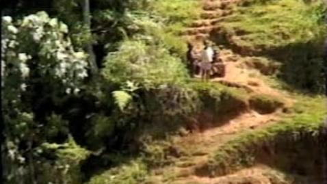 Thumbnail for entry Moro Lake Kutabu Port Moresby 2