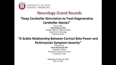 Thumbnail for entry Deep Cerebellar Stimulation to Treat Degenerative Cerebellar Ataxias / A Subtle Relationship Between Cortical Beta Power and Parkinsonian Symptom Severity
