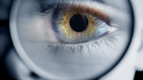 Thumbnail for entry Do You Know the Difference Between the Cornea and the Lens of Your Eye?