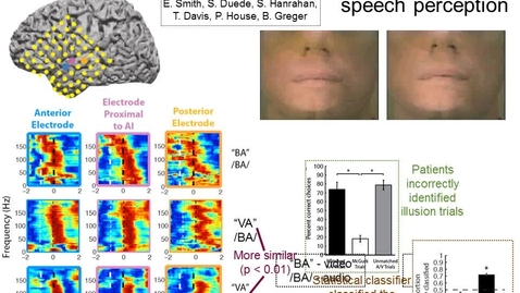 Thumbnail for entry Seeing Is Believing: Neural Representations of Illusory Speech Perception