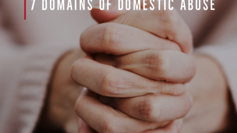 Thumbnail for entry E12: 7 Domains of Domestic Abuse