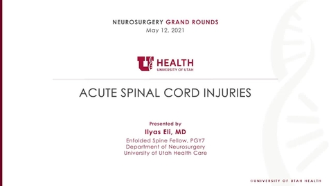 Thumbnail for entry Acute Spinal Cord Injuries