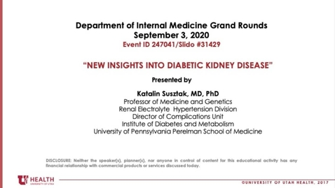 Thumbnail for entry New Insights into Diabetic Kidney Disease