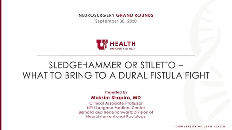 Thumbnail for entry Sledgehammer or Stiletto – What to Bring to a Dural Fistula Fight