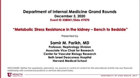 Thumbnail for entry Metabolic Stress Resistance in the Kidney: Bench to Bedside