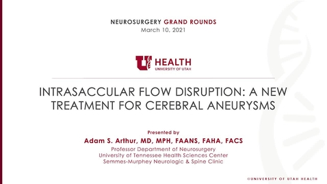 Thumbnail for entry Intrasaccular Flow Disruption: A New Treatment for Cerebral Aneurysms