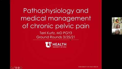 Thumbnail for entry Pathophysiology & medical management of chronic pelvic pain