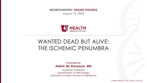 Thumbnail for entry Wanted Dead But Alive: The Ischemic Penumbra