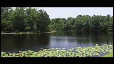 Lake Warren State Park | Destination SC Parks | Knowitall org