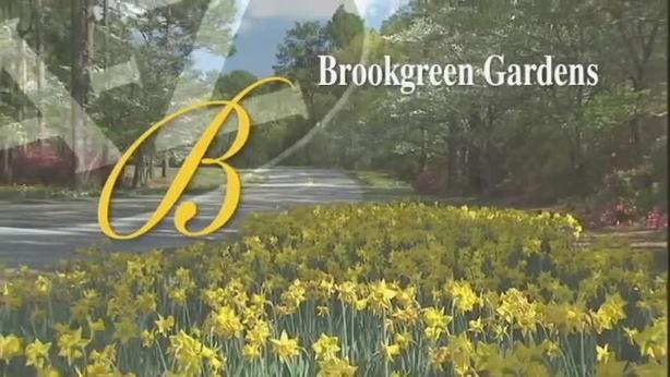 B Is For Brookgreen Gardens | South Carolina From A To Z