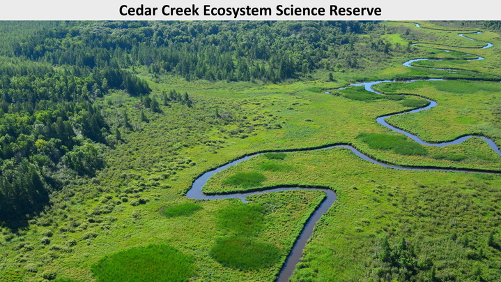 Thumbnail for channel Cedar Creek Ecosystem Science Reserve