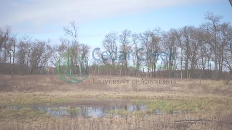 Thumbnail for entry Oak Savanna Highlight - MN Master Naturalist - Cedar Creek